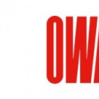 OWA Mineral daş yunu əsaslı panellər