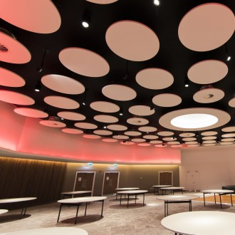 Ecophon Saint Gobain akustik panellər